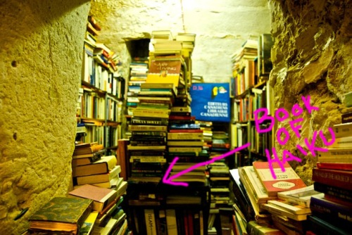 bookshop-216
